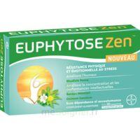 Euphytosezen Comprimés B/30 à SAINT-MEDARD-EN-JALLES