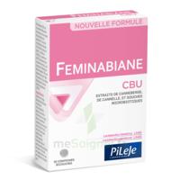 Pileje Feminabiane Cbu 30 Comprimés Bicouches à SAINT-MEDARD-EN-JALLES