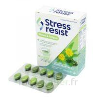 Stress Resist Comprimés Stress & Fatigue B/30 à SAINT-MEDARD-EN-JALLES