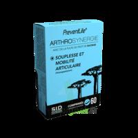 Sid Nutrition Preventlife Arthrosynergie Comprimés B/60 à SAINT-MEDARD-EN-JALLES