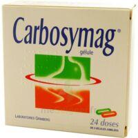 Carbosymag Gél 2plq/12+12 à SAINT-MEDARD-EN-JALLES
