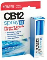 Cb 12 Spray Haleine Fraîche 15ml à SAINT-MEDARD-EN-JALLES