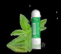 Puressentiel Respiratoire Inhaleur Respiratoire Aux 19 Huiles Essentielles - 1 Ml à SAINT-MEDARD-EN-JALLES