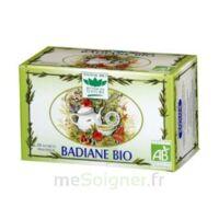 Romon Nature Tisane Badiane Bio à SAINT-MEDARD-EN-JALLES