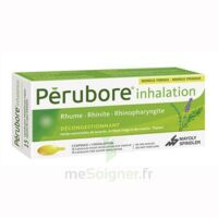 Perubore Caps Inhalation Par Vapeur Inhalation Plq/15 à SAINT-MEDARD-EN-JALLES