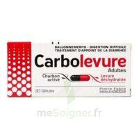 Carbolevure Gélules Adulte Plq/30 à SAINT-MEDARD-EN-JALLES