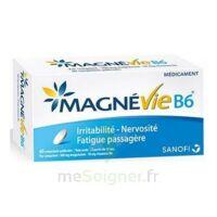Magnevie B6 100 Mg/10 Mg Comprimés Pelliculés Plaq/60 à SAINT-MEDARD-EN-JALLES
