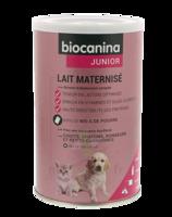 Biocanina Lait Poudre Maternisé B/400g à SAINT-MEDARD-EN-JALLES