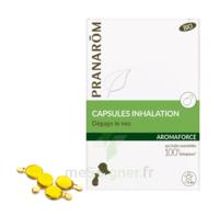 Aromaforce Caps Inhalation Bio B/15 à SAINT-MEDARD-EN-JALLES
