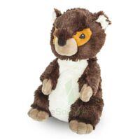 Soframar Bouillotte Marmotte à SAINT-MEDARD-EN-JALLES