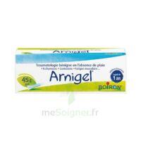 Boiron Arnigel Gel T(alumino-plastique)/45g à SAINT-MEDARD-EN-JALLES