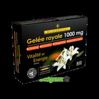 Sid Nutrition Oligoroyal Gelée Royale 1000 Mg 5g _ 20 Ampoules De 10ml à SAINT-MEDARD-EN-JALLES