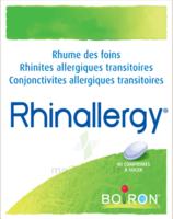 Boiron Rhinallergy Comprimés B/40 à SAINT-MEDARD-EN-JALLES
