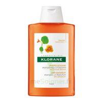Klorane Capucine Shampooing 200ml à SAINT-MEDARD-EN-JALLES