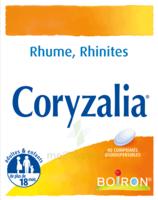 Boiron Coryzalia Comprimés Orodispersibles à SAINT-MEDARD-EN-JALLES