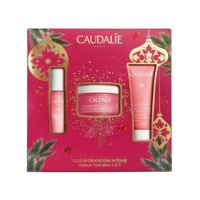 Caudalie Coffret Vinosource-hydra Crème Sos Noël 2021 à SAINT-MEDARD-EN-JALLES